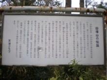 古事記おじさんのブログ-母塚山2