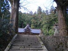 古事記おじさんのブログ-大石見大木2