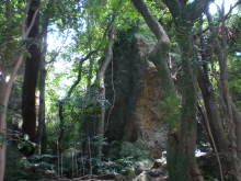 古事記おじさんのブログ-立石神社